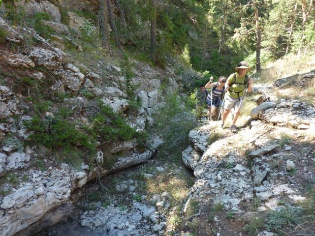 excursión-por-Alcala-de-la-Selva (4)